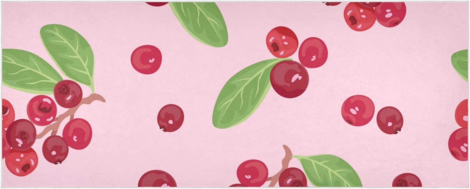 Excellence Women's Warm Ranking TOP8 Scarf Cranberries On Pink Thick Extra Soft S Large