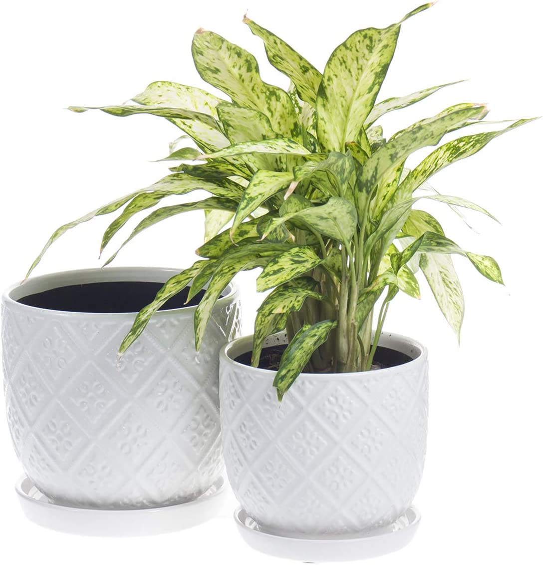 KYY National uniform free shipping favorite Ceramic Planters Garden Flower with and Pots Drainage Holes