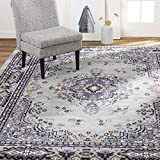 Home Dynamix Premium Sakarya Traditional Area Rug, Oriental Silver/Blue 5'2'x7'4'