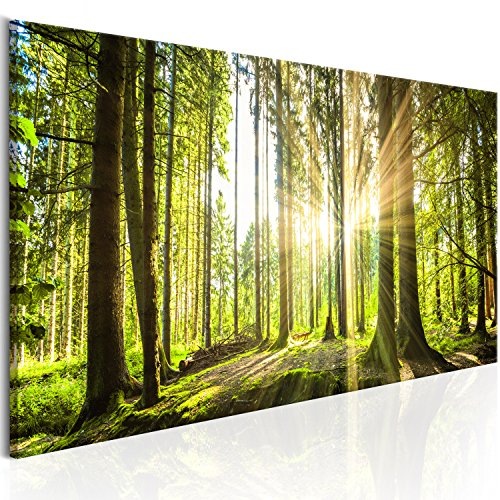 murando Bilder nachtleuchtend 120x40 cm Tag & Nacht Wandbilder nachtleuchtende Farben Kunstdruck Vlies Leinwand XXL Fertig Aufgespannt Wald c-B-0077-ag-a