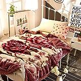 YJJSL La Manta Espesa la Capa Doble Calor Suave y cómoda Manta de Raschel para el sofá/el Dormitorio/la Oficina Manta de la Siesta (Size : 150cmX200cm)