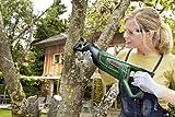 Immagine 1 bosch home and garden 06033a7000