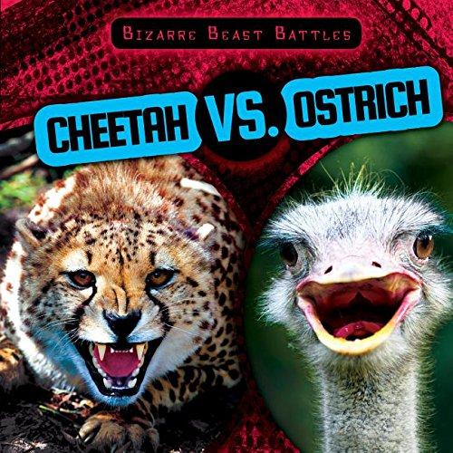 Cheetah Vs. Ostrich (Bizarre Beast Battles)