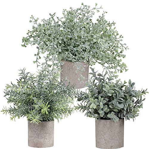 Winlyn Mini Potted Plants Artificial Flocked Eucalyptus Boxwood Rosemary Greenery in Pots Faux Potted Herbs Small Houseplants 8.8'-10' Tall for Indoor Greenery Tabletop Décor Centerpiece 3 Pack