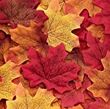 """Package contains 1100 assorted in 5 colors fall maple leaves. (220pcs per color). Each leaf measures 3""""x 3. 3 Made of polyester and printed-on nice vein detail. They came stuck together. Just take 5 - 10 min to peel them apart. Where to decorate - ta..."""