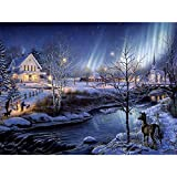 HuaCan Diamond Painting Kits Full Round Drills Handcraft for Adults &Kids Custom Decoration for Room and Wall Snow Night Aurora 30x40cm 11.8x15.9in