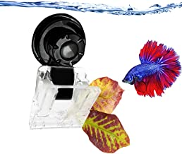 Luffy Aquarium Clip – Ideal for Feeding Grazing Fishes - Holds Veggies, Algae, Seaweed Sheets, Betta Bed, Feeding Accessories – Plastic, No Metal Parts – 100% Fish Safe