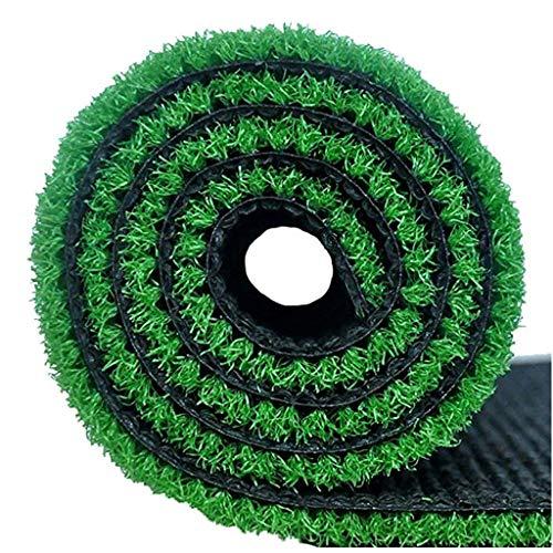 WJ Tapis Artificiel Simulation Faux Gazon Vert en Plastique Balcon Cour Jardin d'enfants en Plein Air Décoration Vert Clôture en Herbe Extérieur (Color : T 1cm, Size : 2 * 3m)