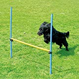 PAWISE Pet Dogs Outdoor Games Ag...