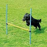 PAWISE Pet Dog Giochi All'Aperto Agilità Esercizio Attrezzatura Agilità Starter Kit Jump Hoop Hurdle Bar