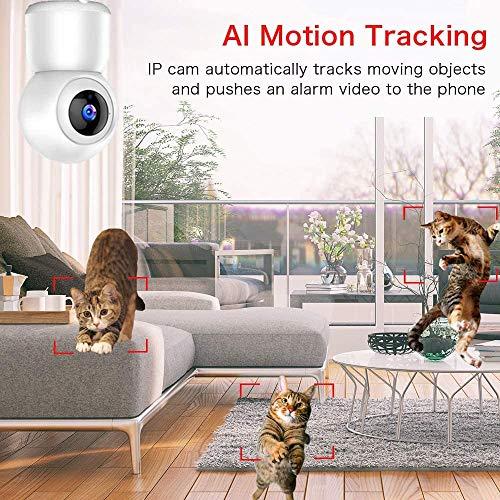 WLAN IP Kamera Überwachungskamera 1080P,IP Kamera WiFi Mibao Nachtsicht 2 Wege-Audio Smart,Home Kamera/Haustier Baby Kamera IP Kamera,App Steuerung unterstützt,Remote Alarm