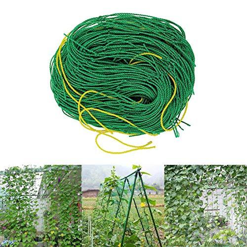 Ranknetz mit großer Maschenweite,Kletternetz Rankhilfe Netz Pflanze Spalier Netz für Gewächshaus Kletterpflanzen Gurken, Himbeeren, Tomaten und andere Gemüsepflanzen Sträucher,Kletterpflanzen 0,9x1,8m