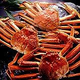 海夢 ズワイガニ 超特大 希少ジャンボサイズ 贈答 ギフト 天然 ずわい蟹 姿 約1.3kg×2尾