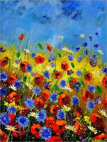 Posterlounge Acrylglasbild 60 x 80 cm: Feldblumen von Pol Ledent - Wandbild, Acryl Glasbild, Druck auf Acryl Glas Bild