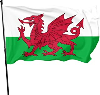 Welsh Dragon Flag Flag Brass Grommets Vivid Color 3x5 Feet Flag Outdoor Decoration, Garden Decoration, Holiday Decoration, Anniversary Decoration