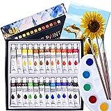 Acrylic Paint, 24 Colours Acrylic Paint Tube Set 12 ml Watercolors Painting Kit Oil Paints Set with 3 Paintbrushes, 1 Palette, 1 Canvas for Beginners, Professional Artist & Kids