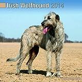 irish wolf hound calendar 2014