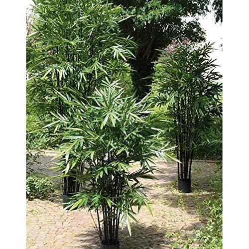artplants.de Bambú de imitación Sayuri, Tronco Artificial, Verde, 210cm - Bambú Falso - Bambú de plástico