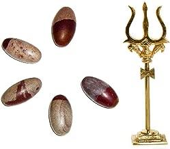 Siddhratan 5 Pcs Narmada Shivling 1
