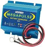 Megapulse Batteriepulser für 12V Kfz-Batterien gegen Sulfatierung - erhöht die Batterielebensdauer drastisch