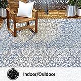 Home Dynamix Patio Country Danica Area Rug, 7'9'x10'2', Blue/Gray