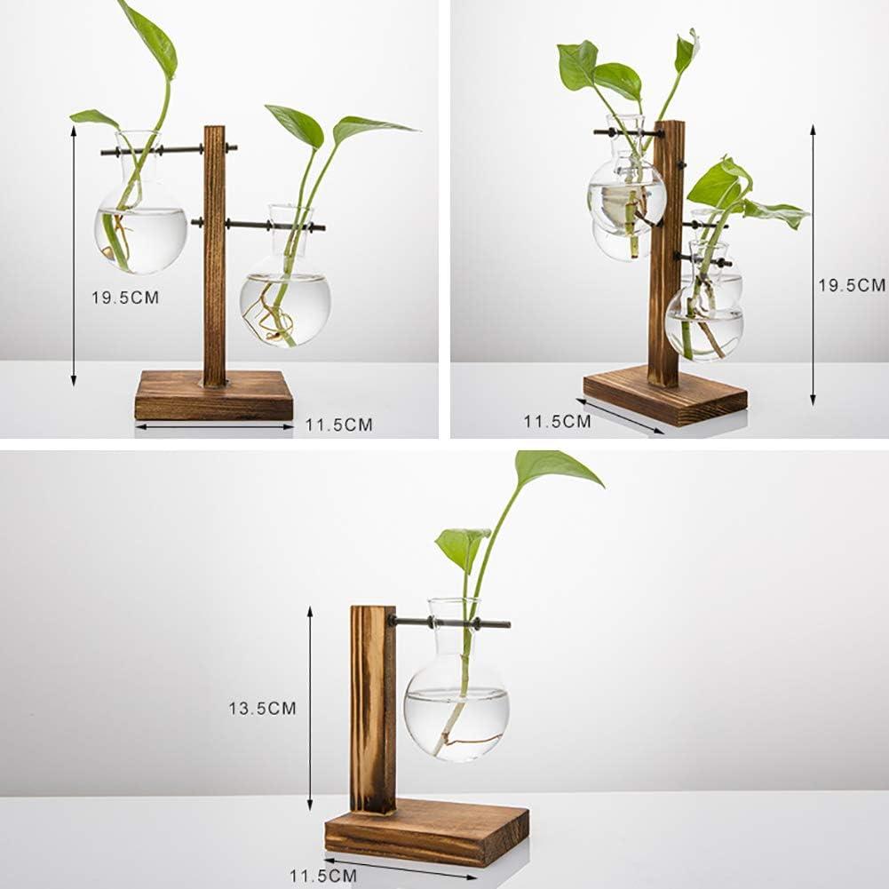 Terrario de plantas transparente con soporte de madera para jarr/ón de cristal creativo hidrop/ónico marco de madera para decoraci/ón de cafeter/ías y salas de caf/é hidrop/ónicas