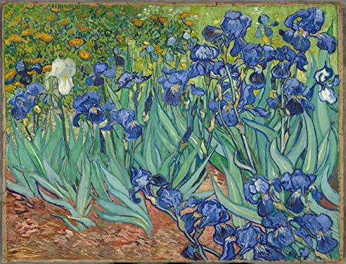 Pintar por numeros Van Gogh - Irises – Lienzos para Pintar por...