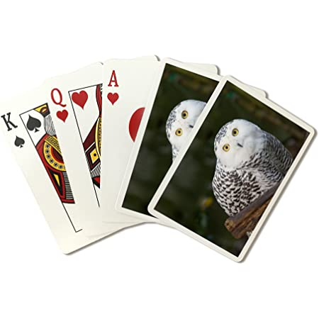 OWL Vintage Playing Cards Full Deck 1960s Bright Colorful Deck of 52 Cards Plus 2 Jokers No Box