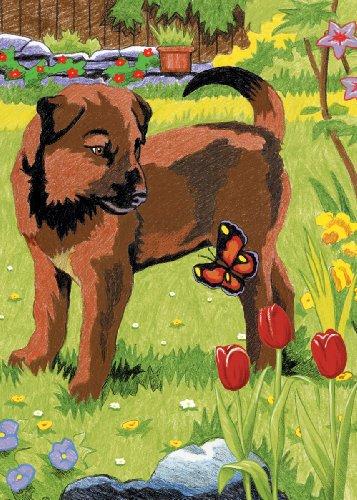 Crayon de couleur mini de numéro Kit 5 « X 7 »-Puppy & papillon