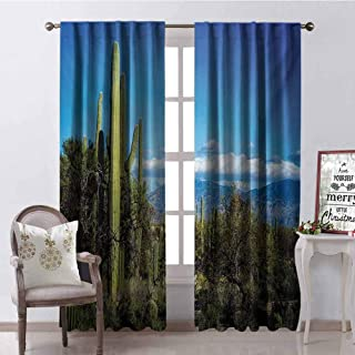 GloriaJohnson Desert Shading Insulated Curtain Wide View of The Tucson Countryside with Cacti Rural Wild Landscape Arizona Phoenix Soundproof Shade W42 x L84 Inch Green Blue