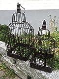 Gabbia Gabbia per uccelli gabbia uccello gabbia per piante Decorativa 2er Set Coppia Shabby stile antico