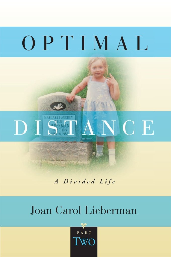 Image OfOptimal Distance, A Divided Life, Part Two