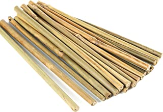 Pllieay 20 Pieces 0.66'/8 inch Natural Thick Bamboo Stakes Garden Stakes for Indoor Gardening Plant Supports