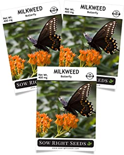 Sow Right Seeds Butterfly Milkweed Seeds; Attract Monarch and Other Butterflies to Your Garden; Non-GMO Heirloom Seeds; Full Instructions for Planting, Wonderful Gardening Gift (3)