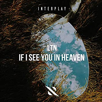 If I See You In Heaven