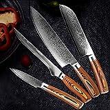 Cuchillo del cocinero Damasco Cuchillo de cocina VG10 Alto Carbono Acero inoxidable Profesional Chef Cuchillo Bloqueo Slicar Utility Cleaver (Color : 4 PCS Value Set)