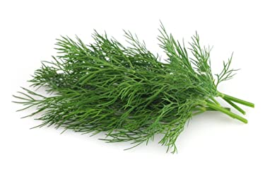 Fresh Dill Leaves, 250g Bunch