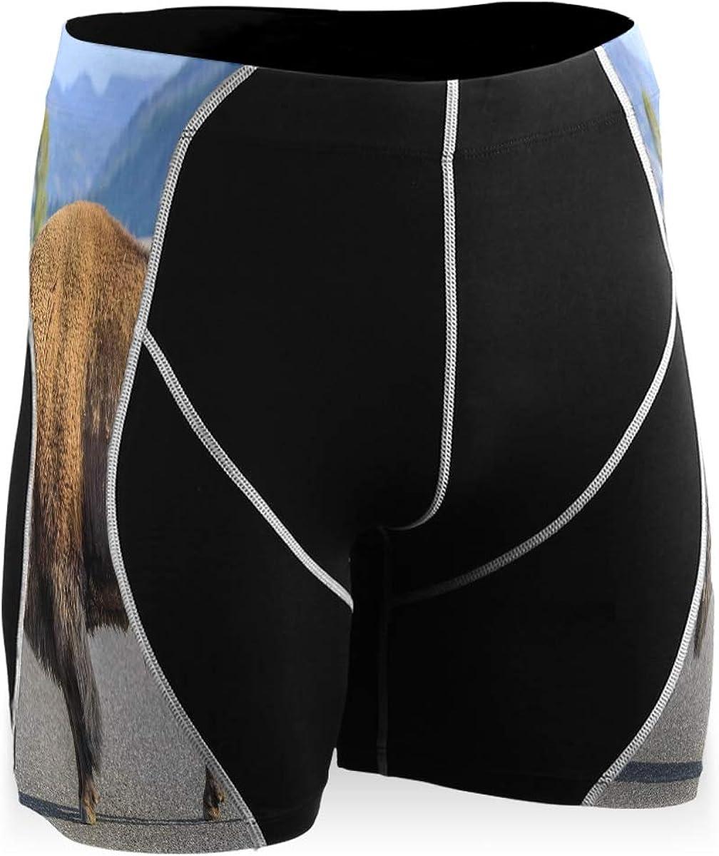 A Big Bison Men's Compression Shorts Athletic Fitness Quick Dry Pants Boys