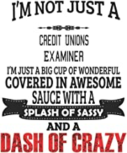 I'm Not Just A Credit Unions Examiner: Notebook: Credit Unions Examiner Notebook, Journal Gift, Diary, Doodle Gift or Notebook