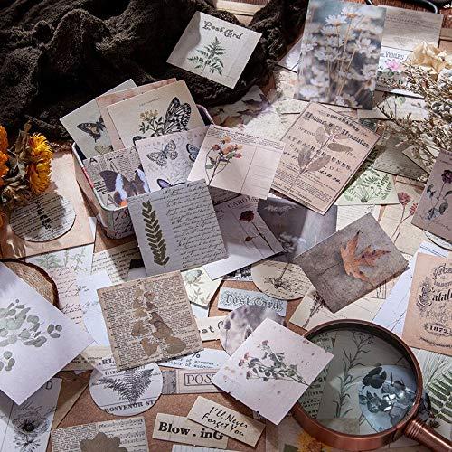 BLOUR 20 Hojas/Paquete Conjunto de Pegatinas de Papel Vintage Naturaleza Planta Etiqueta Decorativa DIY para álbum de Recortes planificador Arte Diario Diario