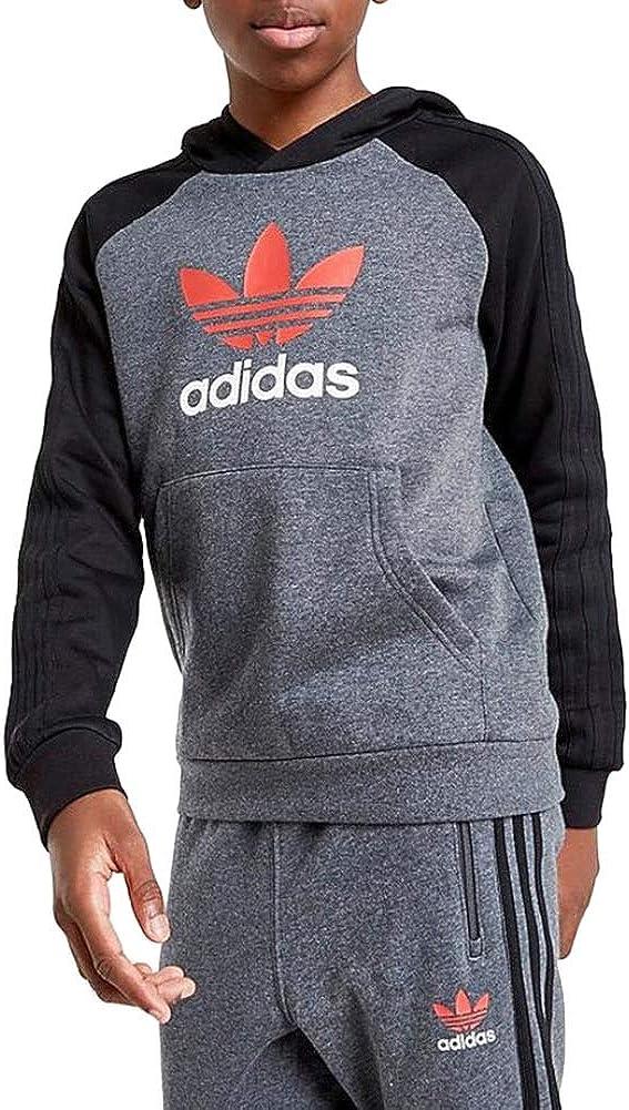 adidas Boys Originals Lock Up X Spirit Hoodie Gd2193