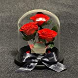 プリザーブドフラワー 彼女のママ妻周年記念バースデーバレンタインデーの結婚式の贈り物のために手作りローズフラワーギフト 高級な不死の花は枯れなかったバラプリザーブドフラワーローズ (Color : Red, Size : Free size)