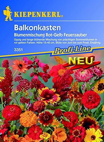 Kiepenkerl, Blumenmischung Feuerzauber, rot / gelb