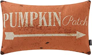 Best TRENDIN Decorative Throw Pillow Cover 20x12 inch Rustic Pumpkin Patch Cushion Case Rectangular Shape PL342TR Review