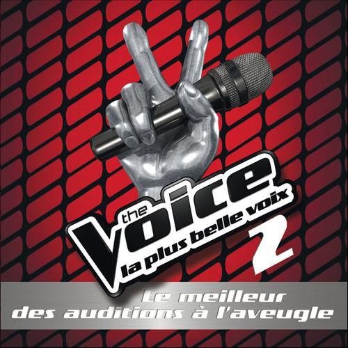 The Voice 2 : le meilleur des auditions à l\'aveugle