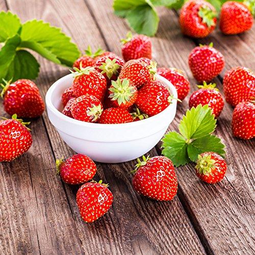20 servetten kom vol aardbeien/eten/vruchten/zomer 33x33cm