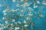 1art1 48105 Vincent Van Gogh - Póster de Almendro en Flor, Saint Rémy 1890 (91 x 61...