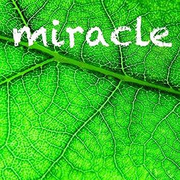 Miracle (feat. Chantal Kreviazuk)