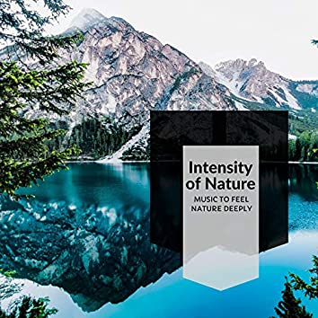 Intensity Of Nature - Music To Feel Nature Deeply