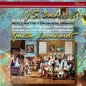 "J.S. Bach: Secular Cantatas Nos. 211 ""Coffee"" & 213"